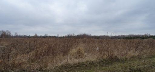 Niezabudowane działki budowlane, Wola Mrokowska